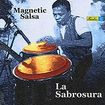 Magnetic Salsa