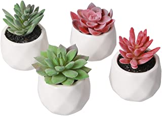 AmyHomie Artificial Plants Set of 4 Mini Fake Succulent Plants with Pots for Home Weeding Office Decoration (red and green)
