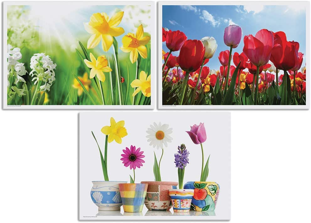 Anderson's Ranking TOP7 Spring Floral Placemat Variety Count - Set Ranking TOP5 Pack 1000