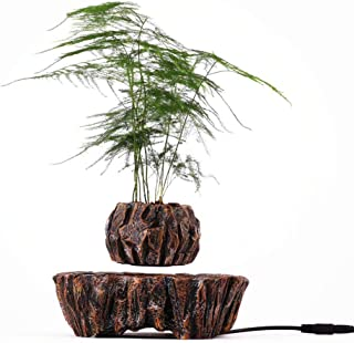 Floating Levitating Plant Pot for Air Plants Home Office Decor, Magnetic Levitation, Floating Air Bonsai Plant Gift