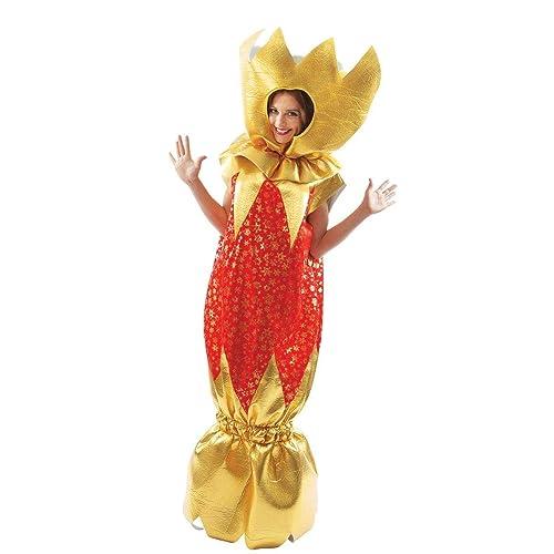 Christmas Fancy Dress.Christmas Fancy Dress Outfits Amazon Co Uk