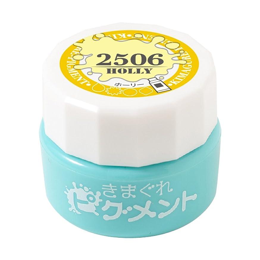 ビザ松コークスBettygel きまぐれピグメント ホーリー QYJ-2506 4g UV/LED対応