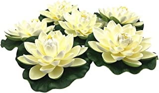 Best water lily lotus Reviews