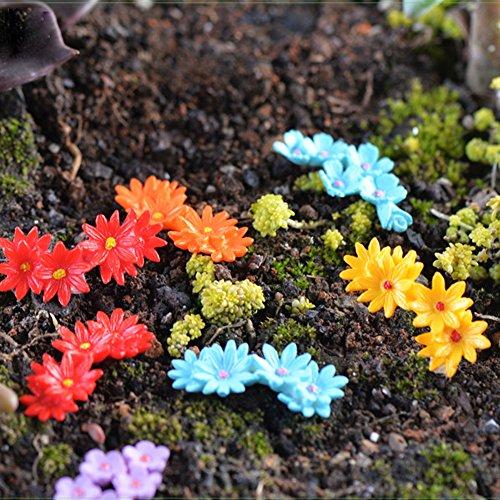 zrshygs Plant Decoration Nouveau 10 Pcs Fleur Mousse Bonsai DIY Artisanat Fée Jardin Paysage Paysage