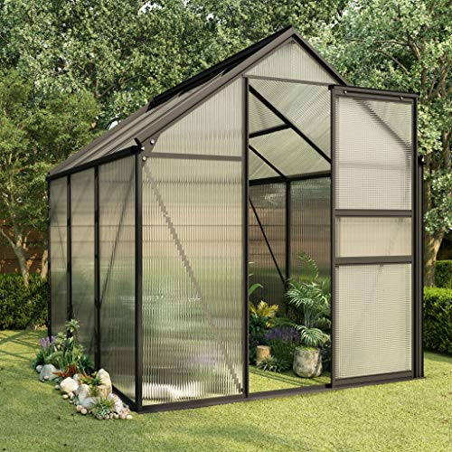 vidaXL Gewächshaus UV-beständig Garten Treibhaus Tomatenhaus Frühbeet Pflanzenhaus Anthrazit Aluminium Polycarbonat 3,61m² 190x190x125/195cm