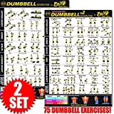 Eazy How To Hantel Workout Banner Poster Big 51 x 73 cm Zug Ausdauer, Ton, Build Stärke & Muscle...