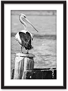 wall26 - Framed Wall Art - A Pelican in Black White - Black Picture Frames White Matting - 23x31 inches