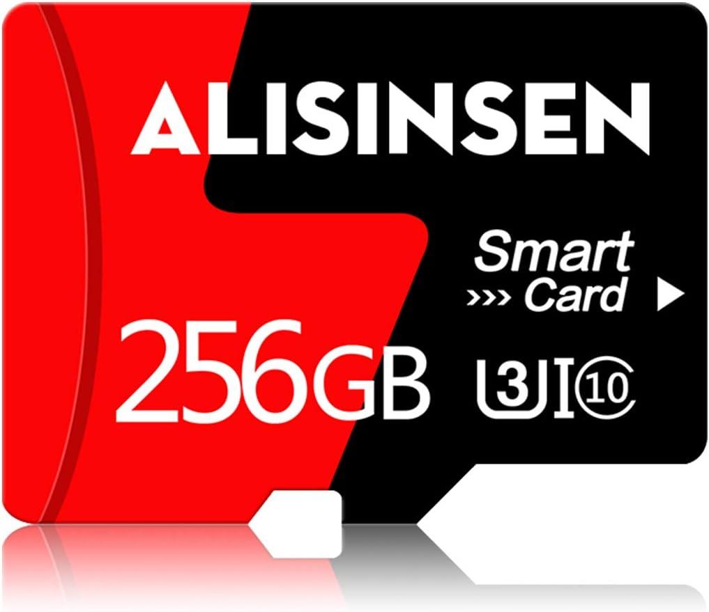Micro SD Card 256GB Memory Card High Speed Class 10 TF Card Micro Memory Card with SD Card Adapter for Cellphone Surveillance Camera Tachograph Tablet Computers