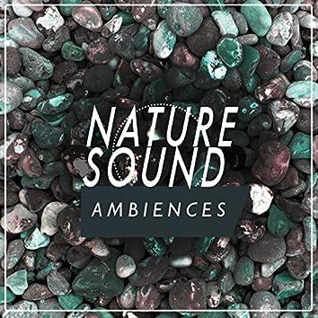 Nature Sound Ambiences