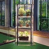 Indoor Greenhouse Lights - Best Reviews Guide