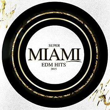 Super Miami EDM Hits 2015