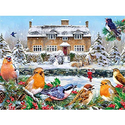 5D DIY Diamond Painting Full Square'Animal' Colorful Bird, Diamond Embroidery, Cross Stitch Kit, Home Decoration, Holiday Gifts,30 * 40Cm(12 * 16Inch)