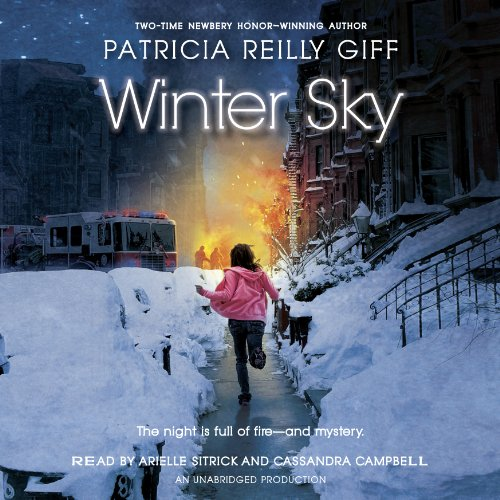 Winter Sky audiobook cover art