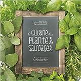 La cuisine des plantes sauvages - Manger et se soigner naturellement de Anne Richard ,Pierre Vaillant ( 3 juin 2014 ) - Editions Métive (3 juin 2014)