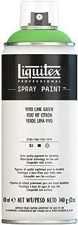 Liquitex 4450740 Professional Spray Paint 12-oz, Vivid Lime Green