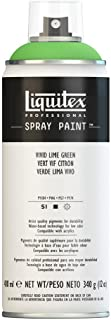 Liquitex, Vivid Lime Green 4450740 Professional Spray Paint 12-oz, 400ml Can