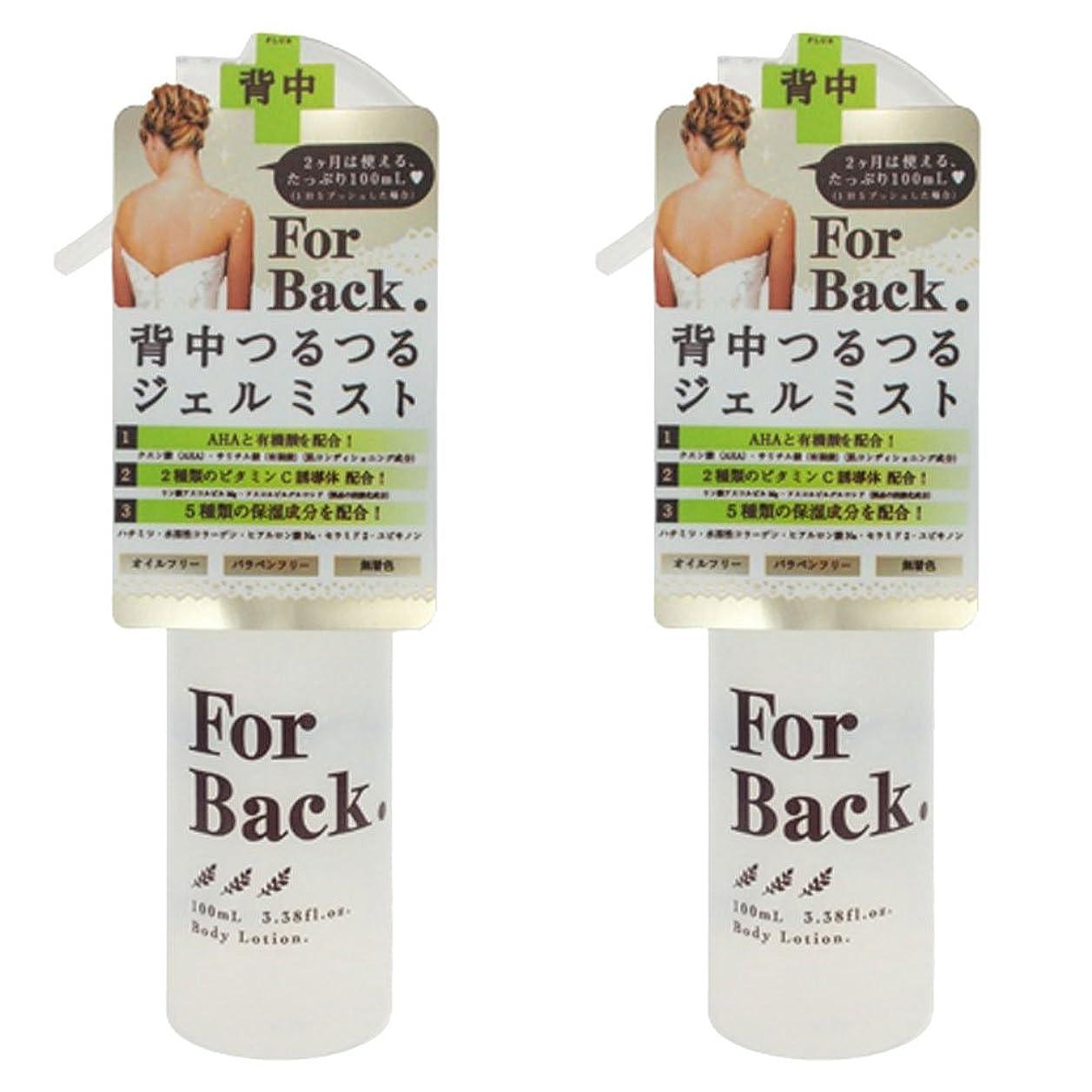 メイド面積小説【セット品】ForBack ジェルミスト 100ml ×2個