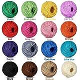 DINGEE 16色セット 麻ひも 手芸用 麻紐 ストリング あさひも 手芸 カラー 25m/2mm 麻縄 園芸 飾り手作り用 編み物(16色セット麻紐)