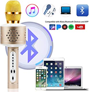 Best itek karaoke microphone and speaker Reviews