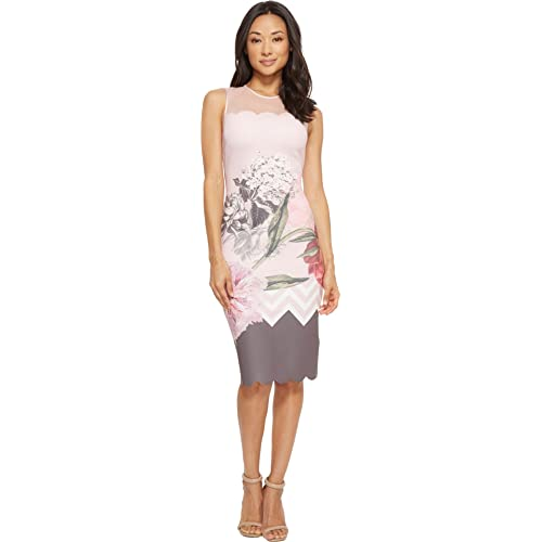 f48fc963cc51 Amazon.com  Ted Baker Women s Arionah Palace Gardens Scallop Bodycon Dress  Dusky Pink 1  Clothing