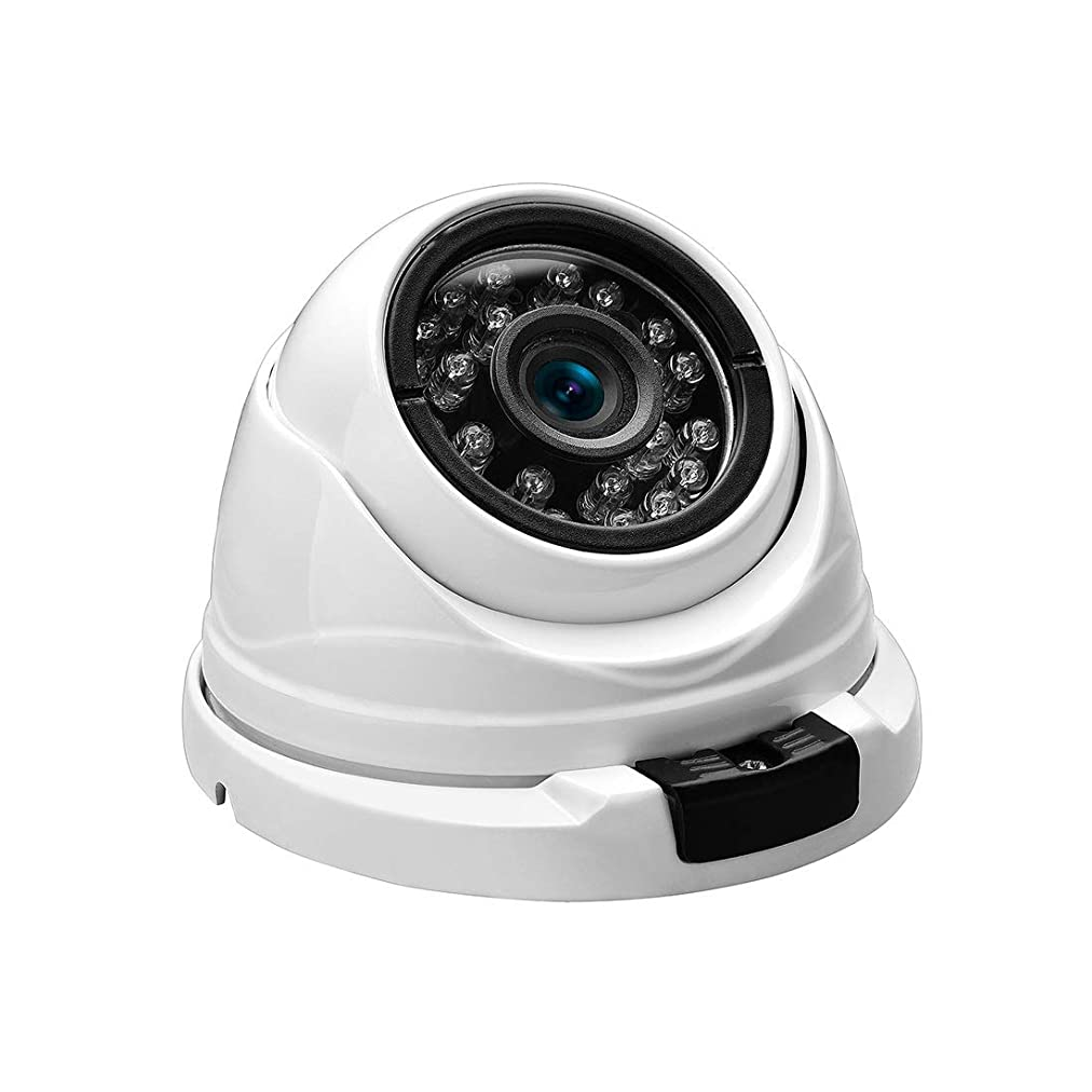 結果として費用遠え辽阳世纪电子产品贸易中心 1080p IP防犯カメラ、HDドームカメラ屋内/屋外監視カメラ、IRナイトビジョンモーション検知付き (Focal Length : 3.6mm)