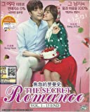 THE SECRET ROMANCE - COMPLETE KOREAN TV SERIES ( 1-13 EPISODES ) DVD BOX SETS