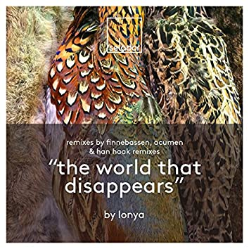 The World That Disappears