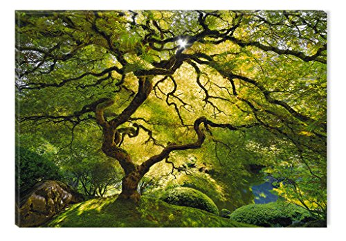 STARTONIGHT Canvas Wall Art Beautiful Green Maple, Nature Framed Wall Art 32 by 48 inches
