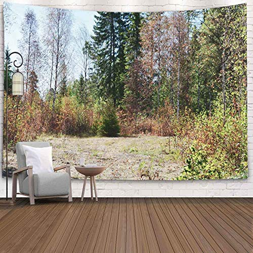 N\A Art Tapestry, Tapestry Wall Hanging Tapestry Blanket Colorful Woodland Alberi nella Stagione...