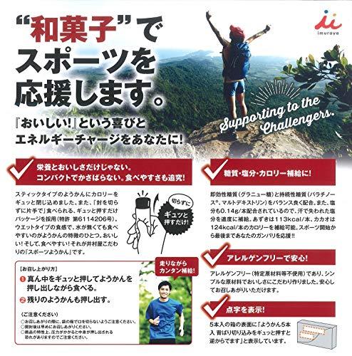 井村屋 スポーツようかん カカオ 38g