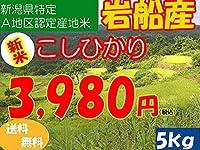 平成28年新潟県産特定産地米 (岩船産5㎏)