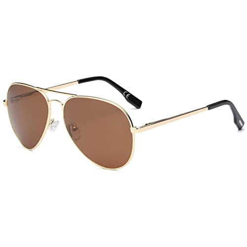 8a00e5e9fa5 AMZTM Double Bridge Metal Frame Mirrored REVO Polarized Lens Aviator  Sunglasses