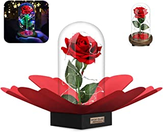 SWEET DIARY Beauty and the Beast Rose DIY Kit, Mothers Day Gifts, Red Silk Rose with Fallen Petals and RGB+White Led light in a Glass Dome on Wooden Base for Mothers Day Gifts (Burlywood Rose kit)