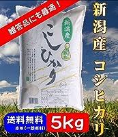 新潟県産 コシヒカリ 令和元年産 精米 5kg ご贈答用にも 熨斗対応いたします。