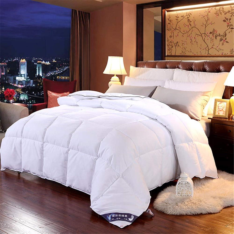 WanJiahomengrenerop Couette 100% Duvet d'oie Couverture pour Hiver Blanc Coton Couverture King Queen Twin Taille, 180x220cm 3kg