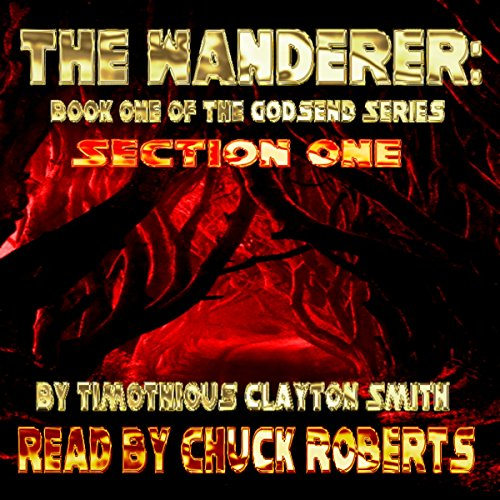 The Wanderer  By  cover art