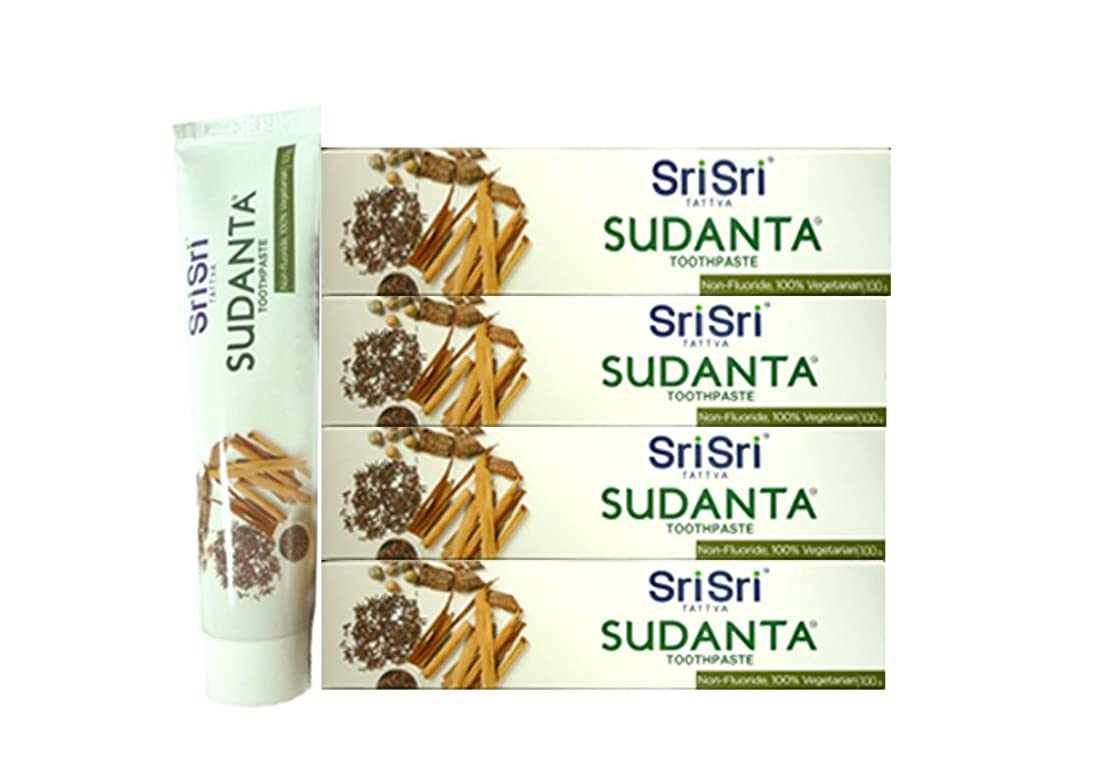 断線穿孔する社員シュリ シュリ アーユルヴェーダ スダンタ 磨き粉 100g*4SET Sri Sri Ayurveda sudanta toothPaste