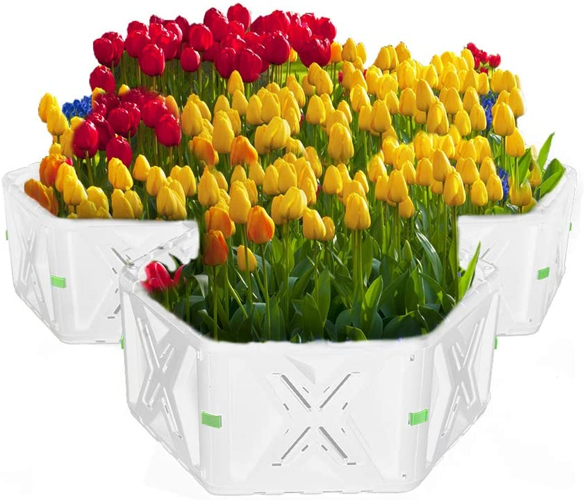 SQUEEZE master Raised Garden Bed Flower Deluxe Pl Planter Max 60% OFF for Vegetable