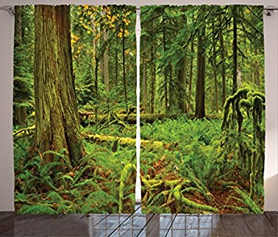 """Ambesonne Tree Curtains, Idyllic Rainforest in Canadian Island Ferns Moss on Plant Nature Ecology Photo, Living Room Bedroom Window Drapes 2 Panel Set, 108"""" X 84"""", Emerald Green"""
