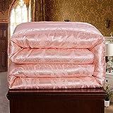 Hxiang Pure Mulberry Silk Comforter Silk Duvet Silk Quilt Silk Filled Comforter Doona Blanket Coverlet Bedspread for King Size Winter Season use (Queen, Jade)