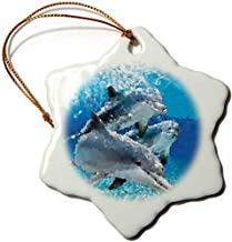 Dolphins Porcelain Snowflake Ornament, 3-inch