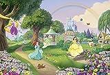 'Komar 8–449Papier peint photo en papier'Disney Princess Rainbow Taille 368x 254cm (Largeur x hauteur), 8pièces, avec, colle fabriqué en Allemagne, multicolore