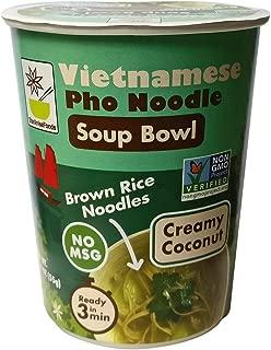 Vietnamese Pho Noodle Soup Bowl, Creamy Coconut, 4 Bowls
