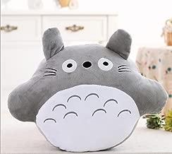 Generic My Neighbor Totoro Plush Throw Pillows Within a 160 X 100cm Blanket