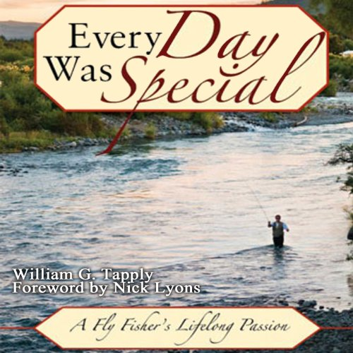 Every Day Was Special audiobook cover art