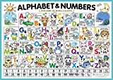 Alphabet&Numbers:おふろで学べる英語ポスター 【English basics ABC ver.】 A2 420×594