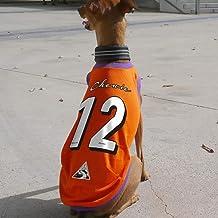 ビッグナンバータンク 背番号 ユニフォーム 名入れ メッシュタンクトップ#2 イタリアングレーハウンド服 犬服 (タイプD(レッド×ブルー), M)