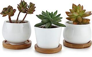 T4U 7cm Cerámico Colección Blanca NO.31 Suculento Maceta Cactus Flor Macetas Envase Plantas con Bandejas de Bambú Conjunto de 3