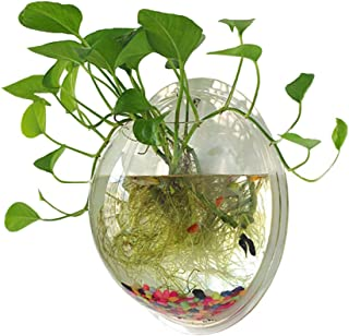 Sweetsea Hanging Wall Mounted Fish Bowl Betta Tank Aquarium Plant Fish Bubble - Clear (Medium)