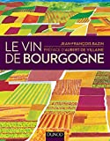 Le vin de Bourgogne (Hors Collection) - Format Kindle - 9782100725083 - 22,99 €